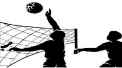 Volleyball Sakal.png