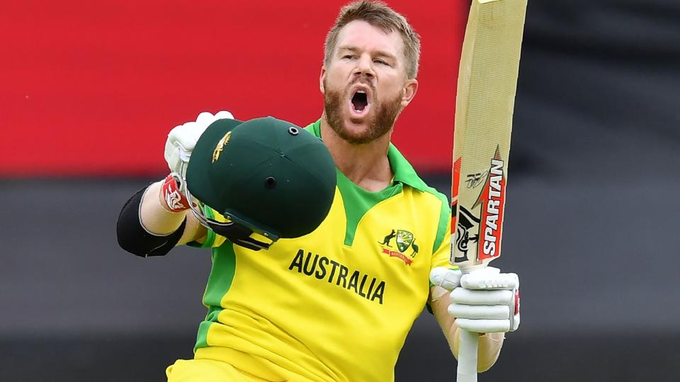 David warner might retire from T20 cricket after world cup 2020