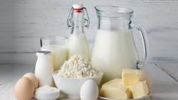 State approves Rs 128 cr subsidy for dairy projects