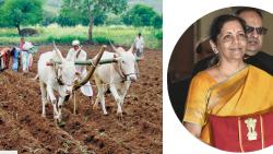 Govt committed to doubling farmers' income by 2022: FM