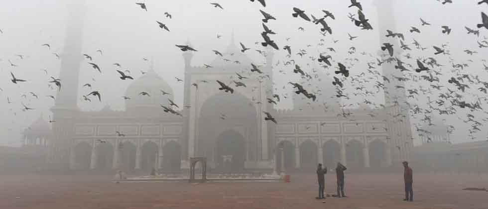 Pigeons fly at historical Jama Masjid courtyard during a foggy morning, in Delhi on Monday. PTI Photo