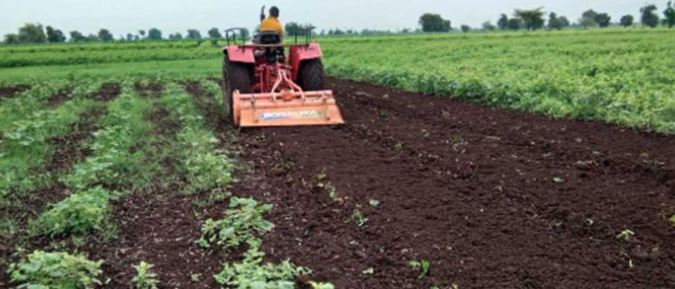 Cabinet approves ordinance for 'One India, One Agriculture Market'