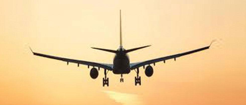Domestic air passenger traffic grew by 8.98 per cent in Feb