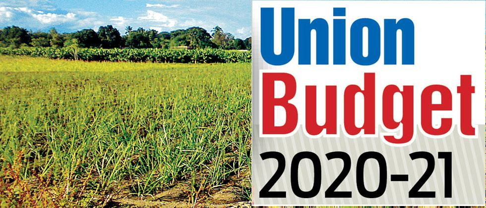 Agriculture sector gives mixed reactions, however, experts call it a vague budget