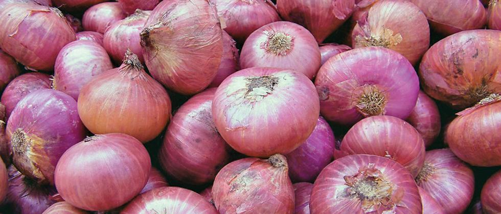 Farmers threaten to stop auction of onions at APMCs