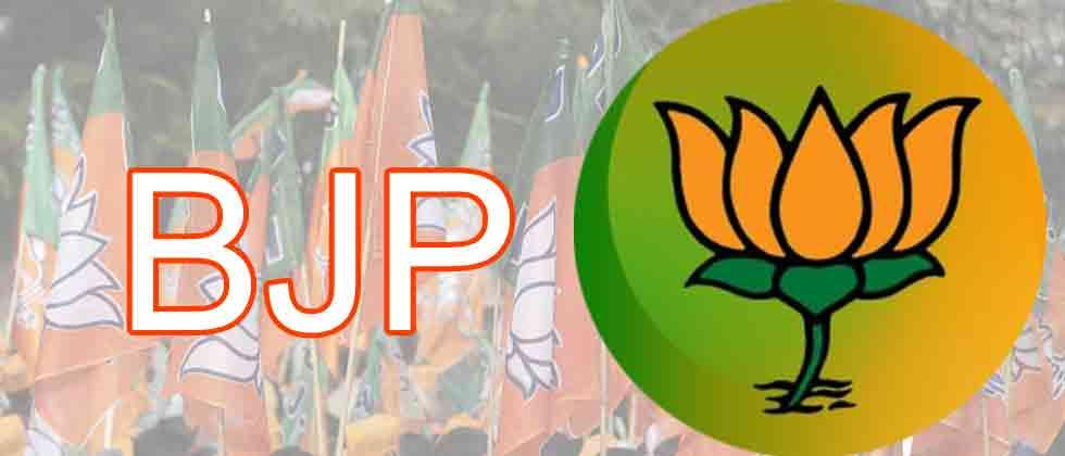 BJP, other ruling parties win Manipur, Meghalaya, Mizoram RS seats