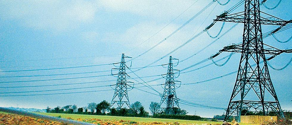Pune district's power failure due to snakes, birds