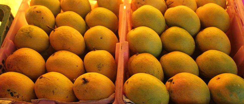 King of fruits Mango takes over twin cities' fruit markets