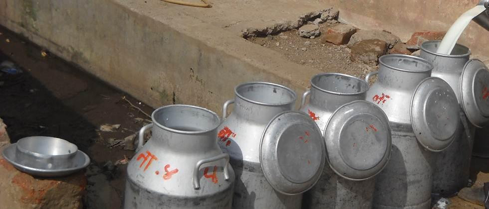Dairy crisis: BJP to launch agitation on August 1 in Maharashtra