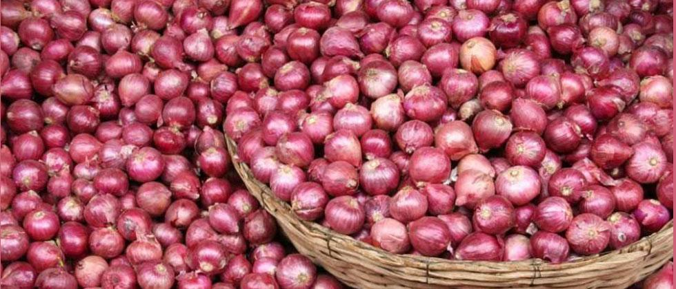 India imposes ban on onion export with immediate effect