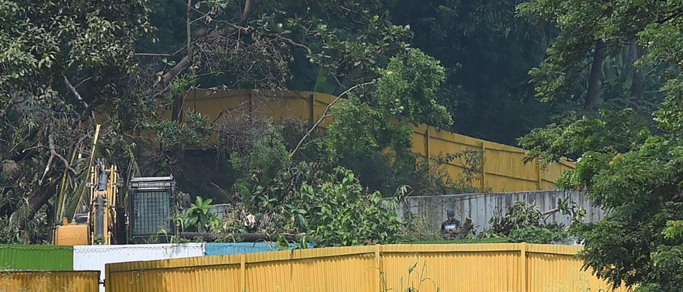 Don't Cut Any MOre trees: SC on Metro Shed In Aarey But Maha Govt Says Whatever Required Has Been Done