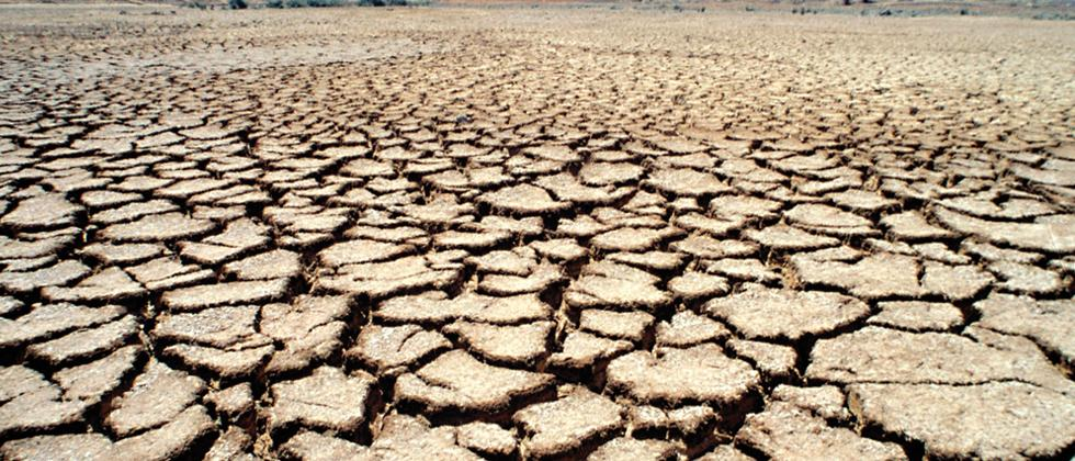 'No vacation' for city students hailing from drought-hit areas in State