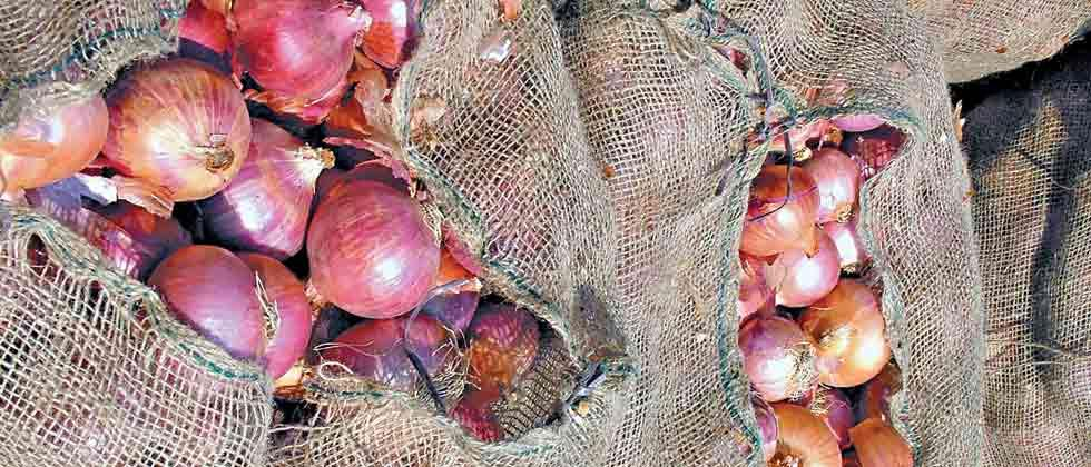 MAHA-FPC will build storage grid for onion