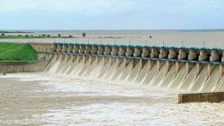 Ujani dam water storage crossed the dead stock limit and useful water storage started on July 18 this year.