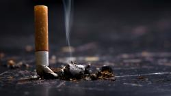 WHO launches initiative to help 1.3 billion people quit smoking