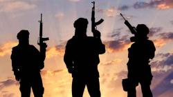 India calls for 'verifiable actions' to end terror safe havens, sanctuaries outside Afghanistan