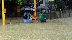 Amid the heavy rains in Mumbai, local train services has been suspended while BMC has declared holiday for offices