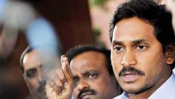 YSRC set for overwhelming win in AP assembly polls