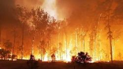 Australia may witness worse bushfires in future