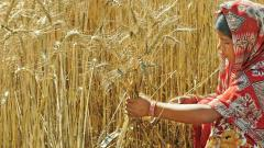 Sowing Area Coverage of Kharif Crops: as on August 28, the total Kharif crops have been sown on 1082.22 lakh ha area against 1009.98 lakh area during the corresponding period of last year, thus, increase in area coverage by 7.15 per cent compared to the c