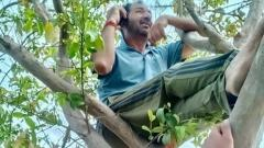 COVID crisis: Cricket umpire Anil Chaudhary climbs up trees in search of mobile network