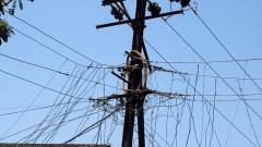 Don't touch any electricity poles, PMC warns citizens