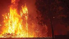 US President Donald Trump declares California wildfires major disaster