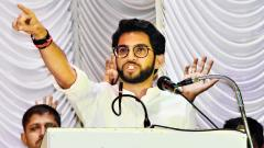 Huge Margin Is A Challenge For Aditya