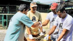 Paralysed Leopard Treated Successfuly By SOS Team