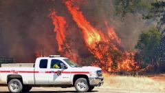 Flames engulf trees near a road during the Carr fire in Redding, California on Friday. Two firefighters have died and more than 100 homes have burned as wind-whipped flames tore through the region.