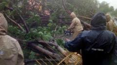Cyclone 'Fani' bites Odisha, three dead