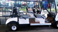 Golf carts to ferry fliers at Pune Airport