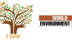 'Pune needs action leadership to combat climate change'
