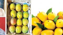 How the coronavirus outbreak impacts mango distribution