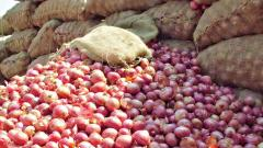 Onion prices drop in Pune