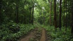 Konkan's picturesque Tillari is now conservation reserve