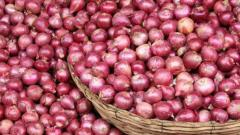 Onion price eases as more  supplies arrive in market