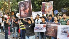 Activists hold protest against tigress' killing in city