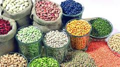 Wholesale Pices Of Moong & Urad Go Up Due To Heavy Rains