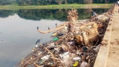 City Garbage Polluting Migratory birds Haven
