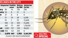 441 dengue cases reported across city