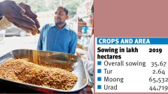 Pulses to get costly