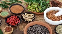 'Research activities will see Ayurveda and India progress'