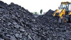 Court convicts Gondwana Ispat, director in coal scam case
