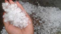 Hailstorms: Maharashtra seeks Rs 200 crore in aid from Centre