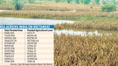 4L hectares crop damaged in State