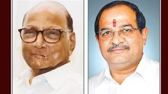 LokSabha 2019: Rift between NCP and Vikhe-Patil widens