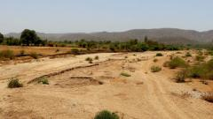 Desertification and Drought Day: The peril of dehydrated land