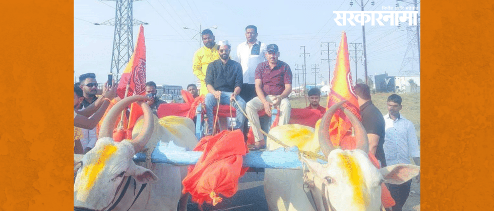 Amit Thackeray Riding on Bullock cart
