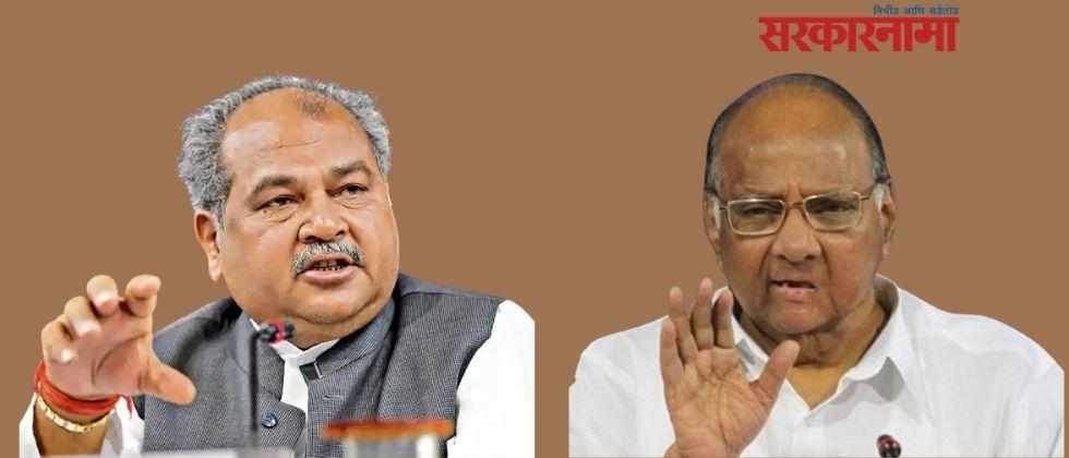 Agriculture Minister Narendra sing tomar replies NCP President Sharad Pawar over his agriculture reforms remark